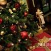 Natale all'Ovidius? Un Natale in famiglia